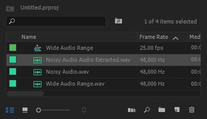 Audio Extracted