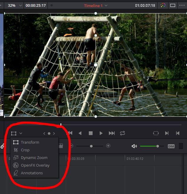 DaVinci Resolve On Screen Tools
